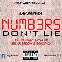 Ray Breyka - Numbers Don t Lie ft. Ygrego, Cuna Jr, Mr. Fleezow & Tchicaca Image